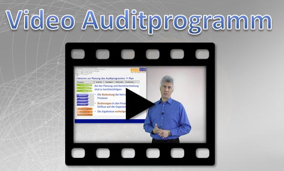 Auditprogramm