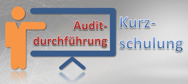 Auditdurchführung Kurzschulung