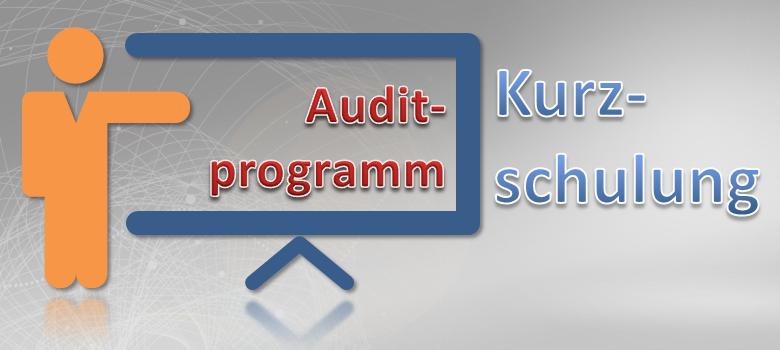 Auditprogramm Kurzschulung
