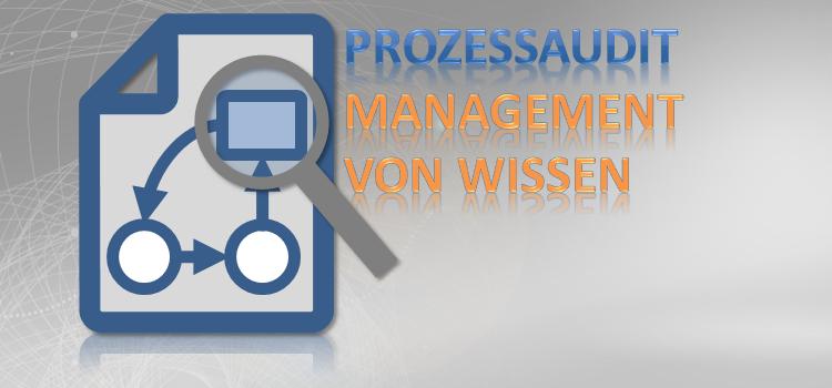 Prozessaudit Management von Wissen