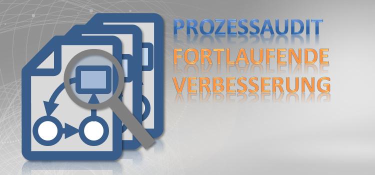 Prozessaudit Checkliste KVP