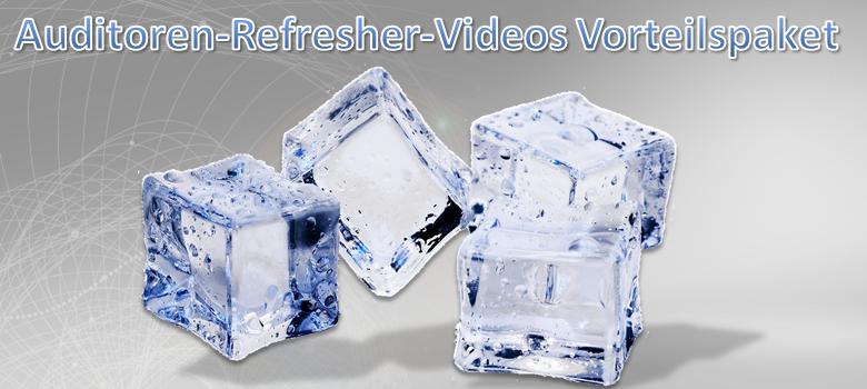 Auditor Refresher Videos Vorteilspaket